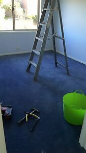 House carpet - blue Glenwood Blacktown Area Preview
