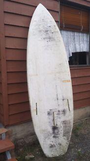 Paddle board Landsborough Caloundra Area Preview