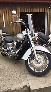 Honda Shadow VT400 LAMS approved immaculate Huonville Huon Valley Preview