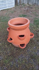 Terracotta pot Helensvale Gold Coast North Preview