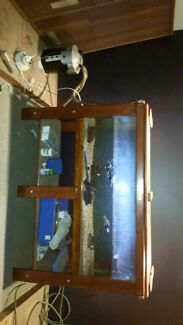 6 foot fish tank with 3 eastern long neck turtles Clayton South Kingston Area Preview