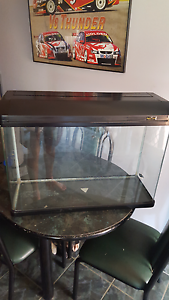 Tank/aquarium/terrarium Rosemeadow Campbelltown Area Preview