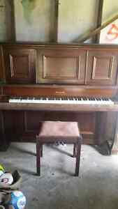 Piano Genuine MAXIM Kingswood Penrith Area Preview