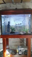 2ft fish tank and wooden stand, everything included filter, heat Noble Park Greater Dandenong Preview