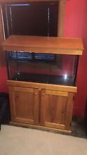 3ft tank with timber cabinet Wynyard Waratah Area Preview