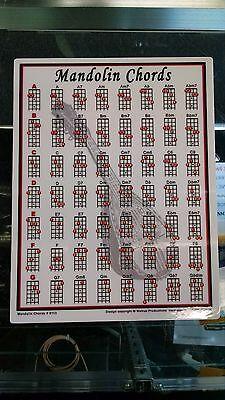 Mandolin Chord Chart Portable Note Teaching Best Beginner Diagrams 8.5 x 11