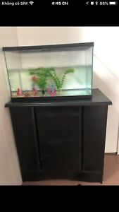 Tank fish with stand