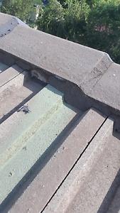 P.g roofing Narellan Camden Area Preview