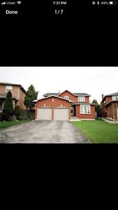 Central Mississauga House RENT Immediate 4+1 Bedroom