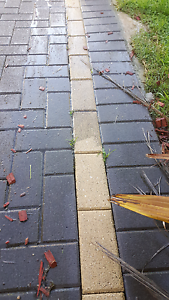 Jet high pressure cleaning Campbelltown Campbelltown Area Preview