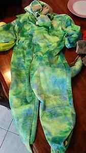 Dragon and dinosaur dress ups Amaroo Gungahlin Area Preview