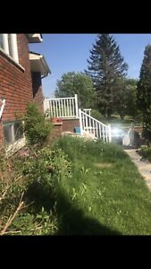 House for rent Orangeville and grand valley
