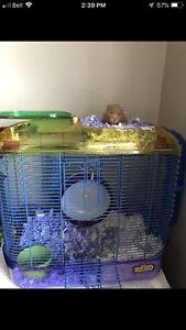 Grimsby - hamster cage