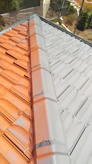 Roofing - roof painting - Repointing - water pressure cleaning