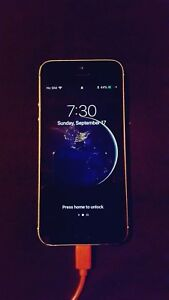 iPhone 5s gold with black screen (Koodo)