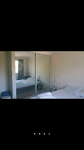 Westmead Master room for rent. Westmead Parramatta Area Preview