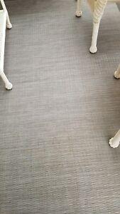 Out door rug.new.