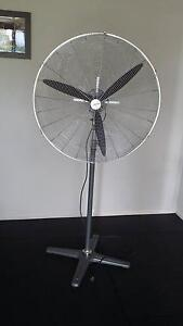 Dynabreeze Fan Manly Brisbane South East Preview