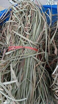 Beautiful Sheets Lemongrass Organic Herbal Infusion & Drink anti Mosquito G
