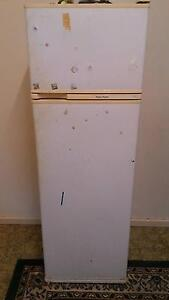 FISHER AND PAYKEL FRIDGE, MODEL C250T, PERFECT WORKING CONDITION Kurralta Park West Torrens Area Preview