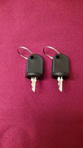 EZGO RXV Golf Cart Keys, Set of 2