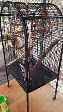 Black bird cage Kallangur Pine Rivers Area Preview