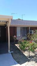Female House Mate wanted Tuart Hill Stirling Area Preview