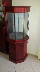 Octagonal Fish Tank Bray Park Pine Rivers Area Preview