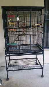Avi One Flighr cage with Stand and Cockateil Greenbank Logan Area Preview