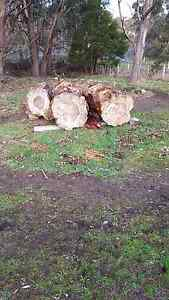 Pine timber logs free. Mornington Clarence Area Preview