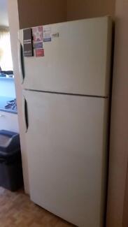 electrolux kalvenator fridge