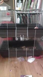 Double story rabbit cage Elizabeth Downs Playford Area Preview