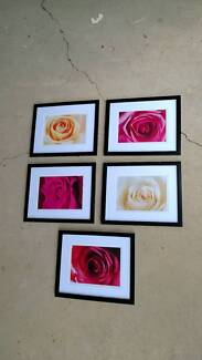 Pictures, set of 5, matching set,