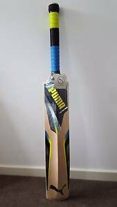 Puma Cricket Bat Redfern Inner Sydney Preview
