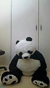 Giant stuffed animal: Panda Glen Waverley Monash Area Preview