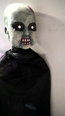 Halloween Zombie Baby Lawn Stake Gruesome Horror Party (Zombie Baby)