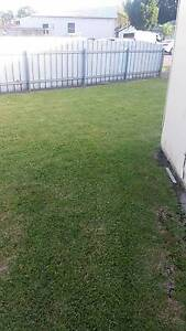 Lawns HQ Maitland Morpeth Maitland Area Preview