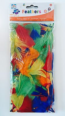 Children Kids Create Pack of Mixed Coloured Assorted Feathers Art Craft Fun Red