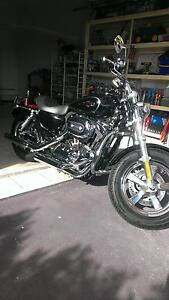 Shiny HD sportster custom Pacific Pines Gold Coast City Preview