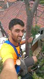 Handyman services - home improvement - tree looping - Perth Perth City Area Preview