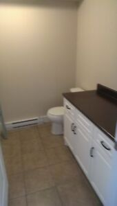 Completely renovated  2 bed lower level flat in Eastern Passage!