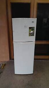 (Home delivery) 238L LG fridge freezer Mile End West Torrens Area Preview