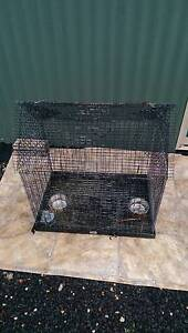 Cage, Budgie Parrot Guinea Pig Rabbit Ballarat Central Ballarat City Preview