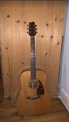 Fender F-210 Acoustic Guitar