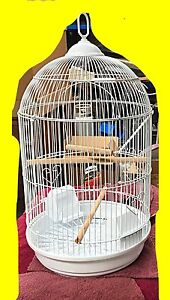 Small bird cage brand new.  White or black Wangara Wanneroo Area Preview