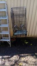 2 bird cage Riverwood Canterbury Area Preview