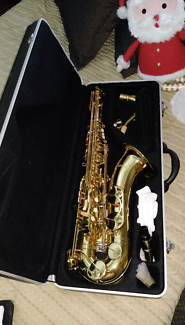 Saxophone Alto is all I know, great for school
