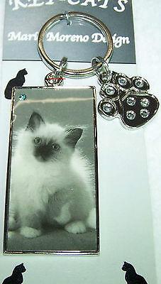 Designer Schlüsselanhänger Katze Perser Kätzchen Anhänger Retro Mario Moreno cat