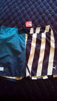 Puma Cat Logo Board Swimming Lightweight Swim Blue White real shorts
