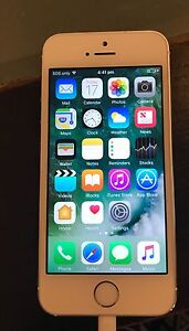iPhone 5s perfect condition Daceyville Botany Bay Area Preview